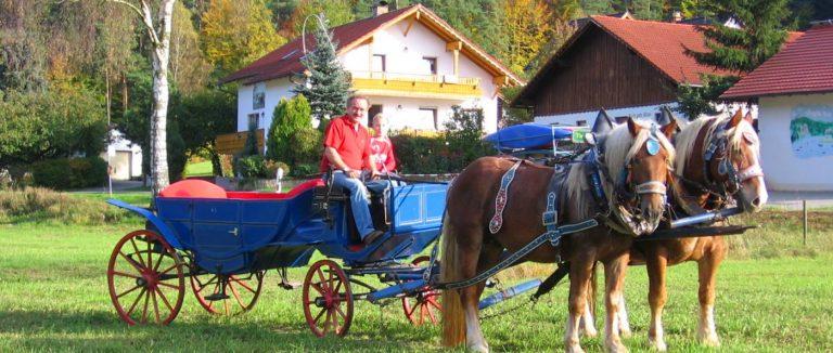 pferdehof-bayerischer-wald-reiturlaub-in-bayern-kutschenfahrten