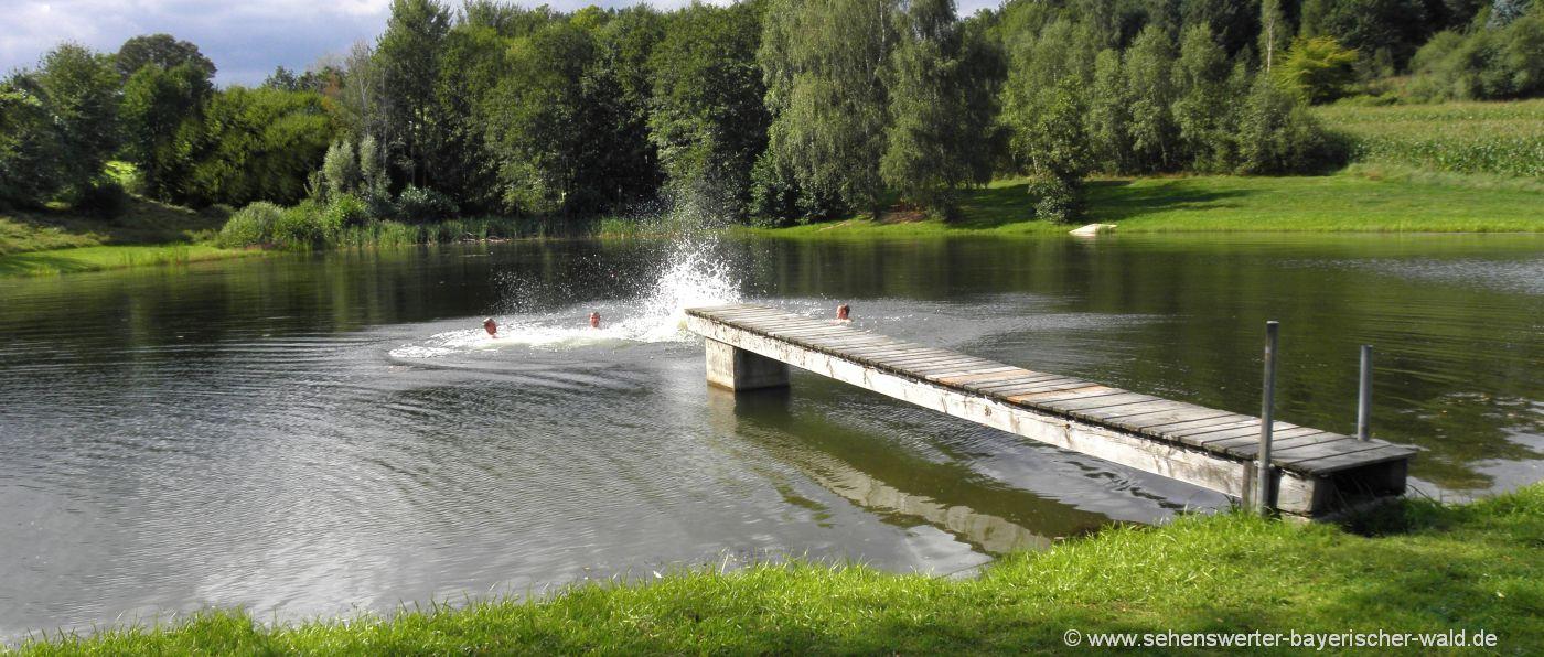 zell-badesee-oberpfalz-erlebnispielplatz-naturbadeweiher