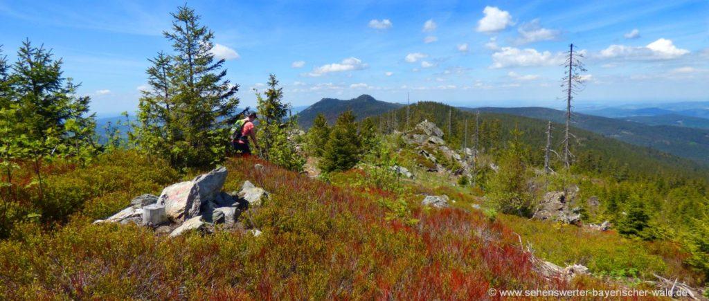 Kammwanderung vom Zwercheck zum Osser Gipfelsteig ab Lohberg