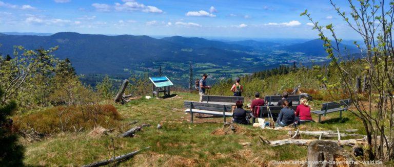 zwercheck-naturkino-aussichtspunkt-lohberg-bayerischer-wald